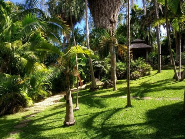 Barbados Andromeda Gardens Paradise