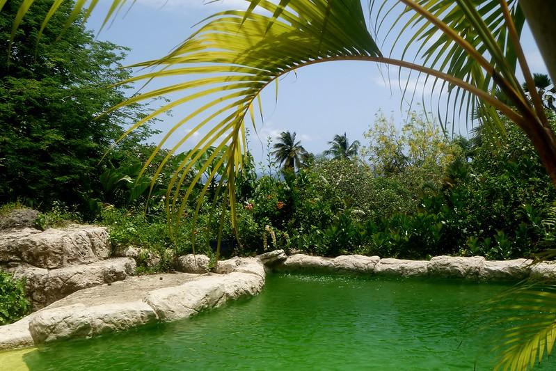 Barbados Andromeda Gardens