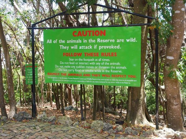 Barbados Wildlife Reserve Habitat
