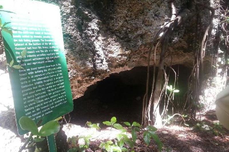 Barbados Grenade Hall Cave