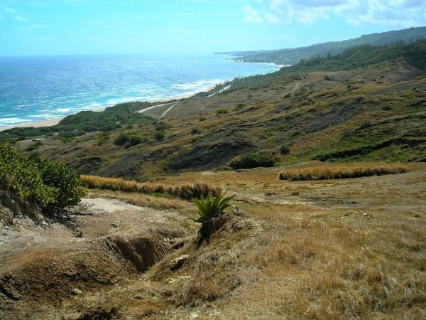 Barbados Hiking And Walking Experiences