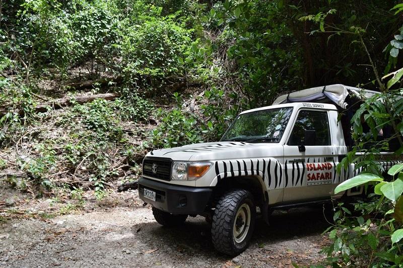 Barbados Island Safari backroads