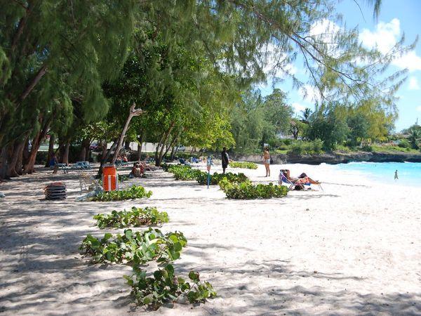 Enterprise (Miami Beach) Barbados Gem