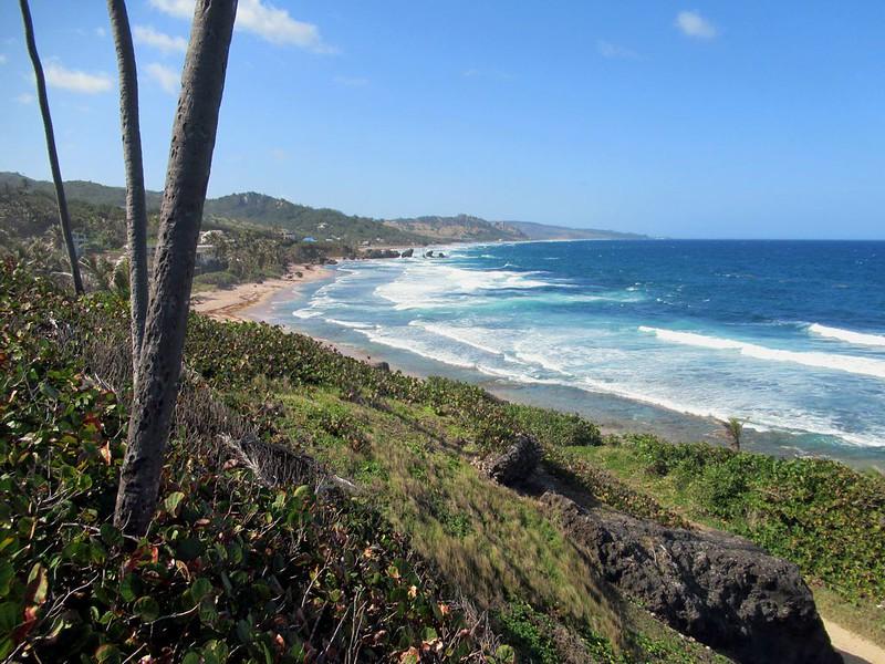 Barbados morning hikes