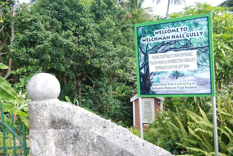 Barbados welchman hall gully