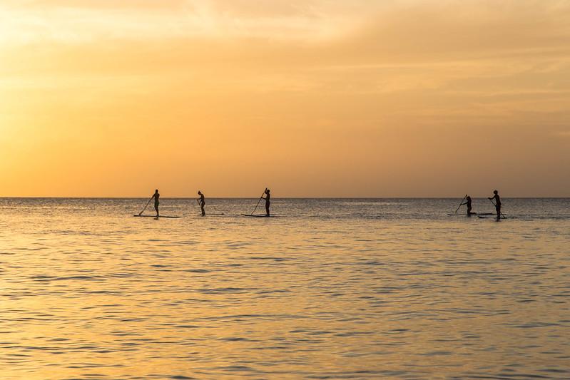 barbados paddleboarding