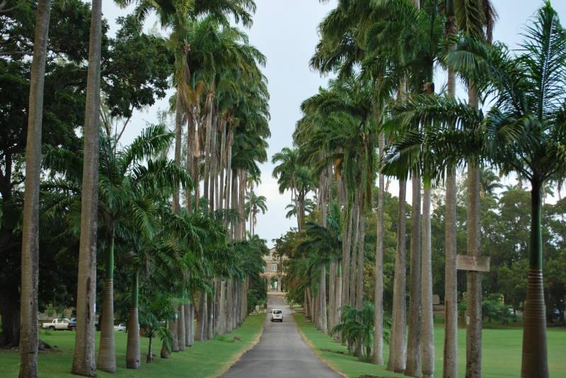 Barbados Codrington College entryway